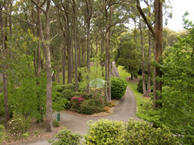 Mount Lofty Botanic Garden - Tourism Gold Coast
