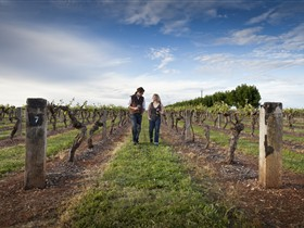 Coonawarra Wineries Walking Trail - Tourism Gold Coast